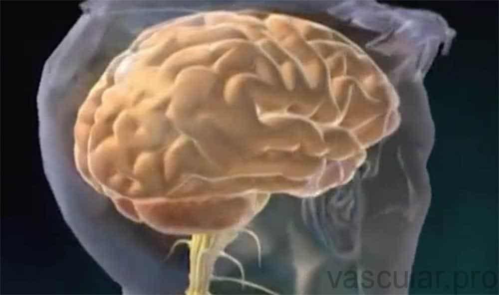 Dor neuropática e pé diabético