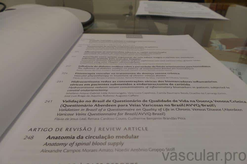 Artigo vascular publicado